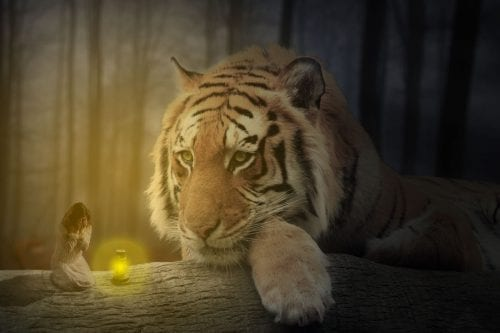 Mikan Simonis | Art portfolio | Fantasy Tiger